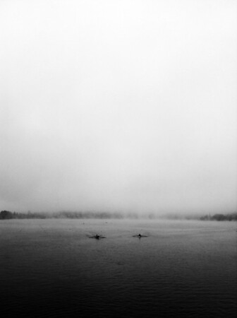 Two sculls on Green Lake in Seattle paddling through the fog on an August summer morning.