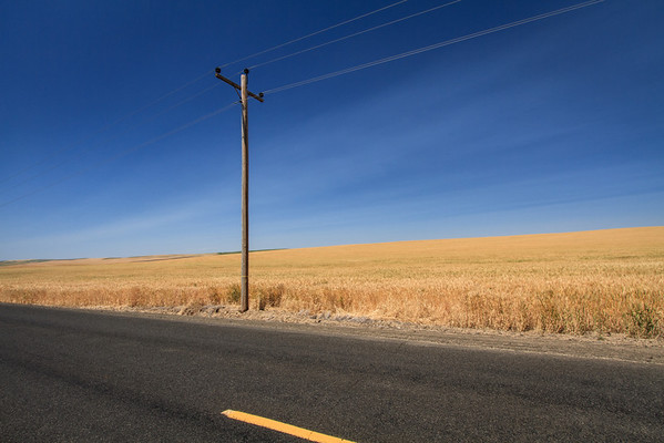Lines along a Walla Walla County road in Washington state.
